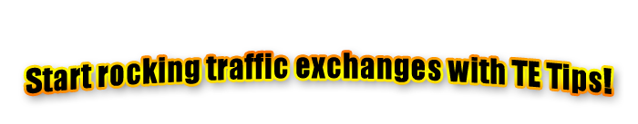 Traffic exchange guide